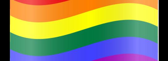O homoseksualizmie i pośle Biedroniu