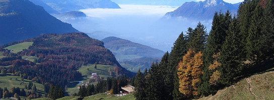 Praca w Szwajcarii